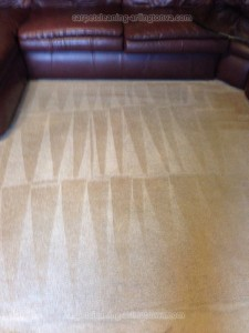 carpet-cleaning-Arlington-b7258561f933a80232cead9f2e355d1a