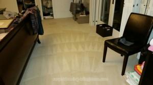 carpet-cleaning-Arlington-VA-54e251e9ef4446095c6c2f4ab6be5f49