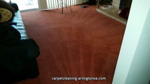 carpet-cleaning-Arlington-VA-12e693d8a46ab513a76cd4a49aef1394